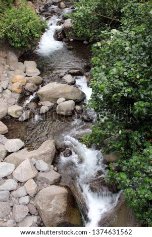 The Iao Stream flowing over a rocky streambed in Iao Valley State Park, Maui, Hawaii, USA