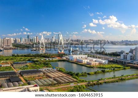 The Iconic Landmark Cross-sea Bridge (Century Bridge) and Surrounding Architecture, in the Marina Bay Area of the Capital City of Haikou, Hainan Province, China. Urban Landscape.