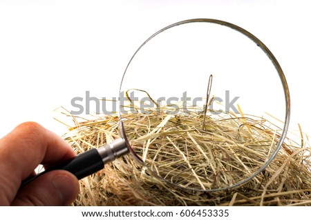 The idiom or the figure of speech look for a needle in a haystack is used to describe something elusive in a large space or a sisyphean task. Magnifying glass on the needle is isolated on white Stock photo ©