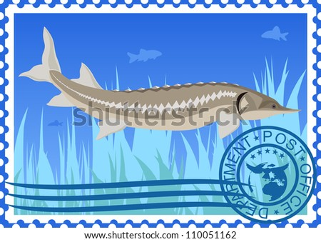 The illustration on a postage stamp. Sturgeon in their natural habitat.