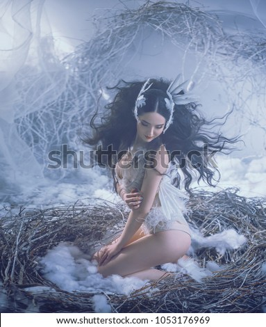 adult fairy photo shoot