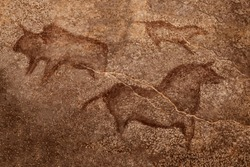 The image of ancient animals on the wall of the cave. history of antiquities, archaeology.
