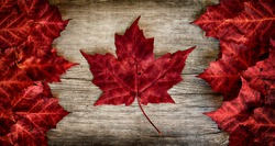 The image of the flag of Canada constructed entirely out of genuine maple leaves from species native to that country.  Laid out on top of weathered cedar.