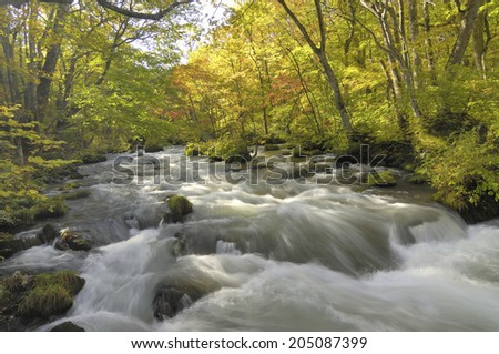 The Image Of The Flowing Water Of Stream #205087399