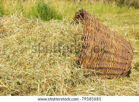 the image shows a wicker basket full of fresh hay