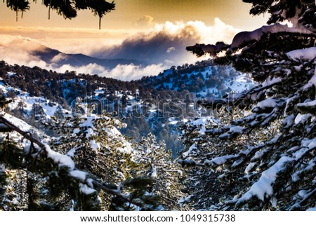 The impressive Troodos mountain range with its idyllic forests stretches across most of the western side of Cyprus offering a cool sanctuary in the summer and the opportunity for sports in the winter.