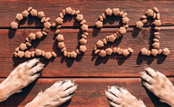 The inscription 2021 is laid out with dog dry food on a brown wooden background and red paws of two dogs. Original creative Christmas layout for a pet store. Dogs are waiting for their food.