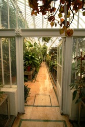 the inside of the botanical gardens belfast