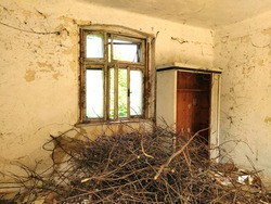 The interior of an abandoned old rural house with light cracked walls, an old beautiful window with broken glass and a floor covered with dirt, branches and brushwood.
