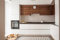 The interior of the fashionable beautiful kitchen with white furniture, wooden inserts, wooden floor, a rug of Victorian mosaics and a dog lying on the floor.