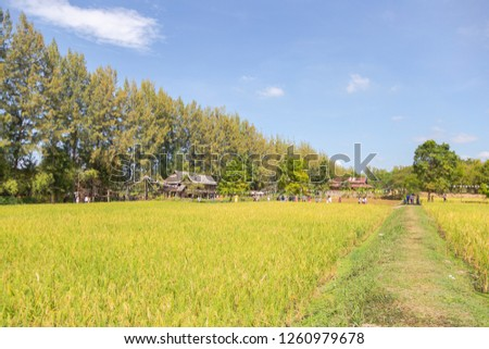 The Isan and villages are star attractions featuring unique houses in architecture and in pristine condition. at Jim Thompson Farm Nakornratchasima, Thailand - December 16, 2018 #1260979678