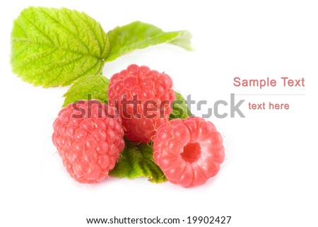The isolated berries of a raspberry on a white background