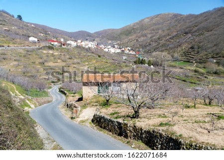 The Jerte Valley, in northern Extremadura is famous for the cherry blossom in Spring; an amazing spectacle when over two million trees bathe the valley sides in white. Stock photo ©