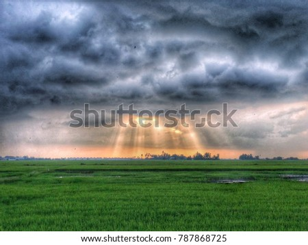 The Jesus Light at paddy field #787868725