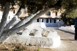The Jewish cemetery in the old city of Fez, Morocco. a view on some of the tombstones from under a low tree .