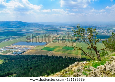 The Jezreel Valley landscape, viewed from Mount Precipice. Northern Israel