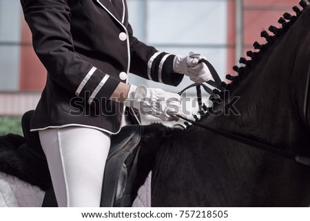 The jockey sits in the saddle on a horse shooting close-up. Correct landing in the saddle. A pedigree horse for equestrian sport.