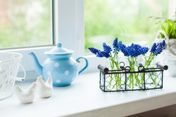 The kitchen window sill