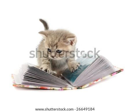 The kitten plays with the book