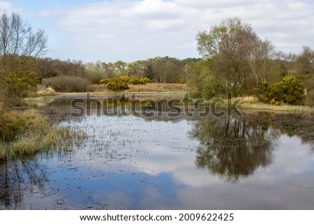 The lake at the old lead mines workings in Conlig, County Down in N Ireland. This environmentally friendly waterway is now the perfect spot for wildlife  Foto stock ©