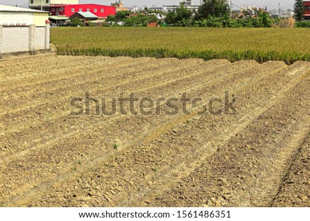 The land  break ground by cultivating machine #1561486351