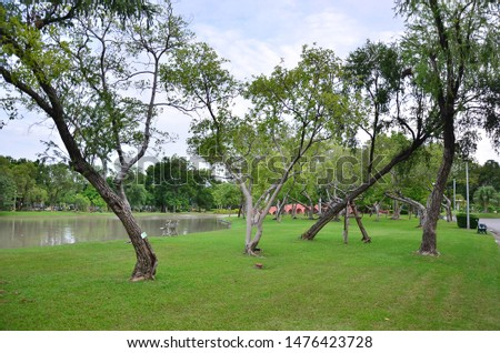 The landscape of Chatuchak Park, Chatuchak Park is a park for recreation in the north of Bangkok, Thailand.