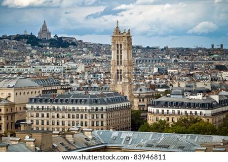 The landscape of Paris made from Notre Dame de Paris, France