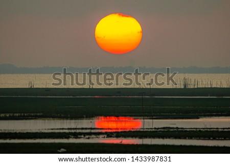 The large sunrise is orange. Sunrise over the sea and mangrove forest