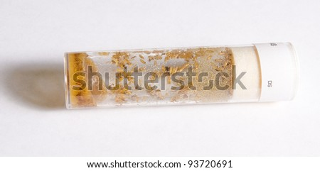 The larvae of Drosophila flies in the test tube with nutrient solution on a white background
