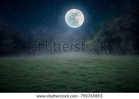 The lawn in the night with a full moon is not beautiful.