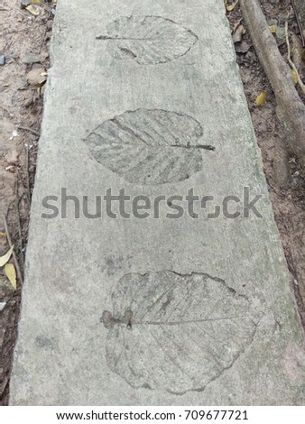 The leaf imprints on the cement floor.  #709677721