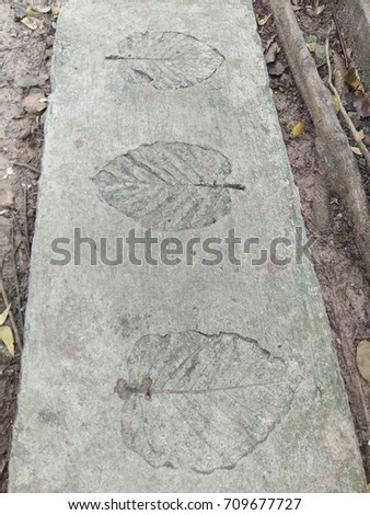The leaf imprints on the cement floor.  #709677727
