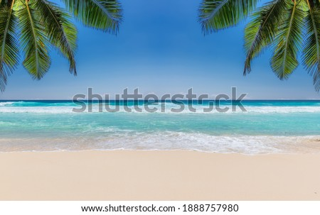 The leaves of palm trees on Sunny tropical beach.  Summer vacation and tropical beach background concept.