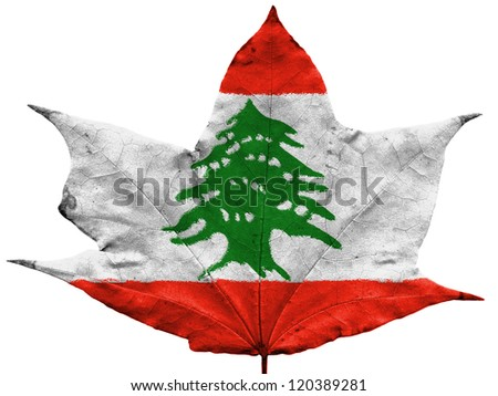 The Lebanese flag painted on dried autumn leaf