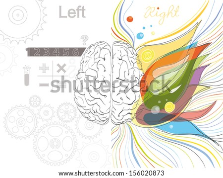 The left and the right brain functions
