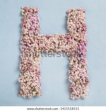 The letter H of the Roman english alphabet, the Russian alphabet is lined with lilac flowers on a blue background #1415518511