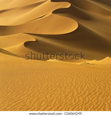 The Libyan desert - a fantastic place for travelers and photographers. Beautiful structure of dense yellow sand, dune of the huge sizes. #136064249