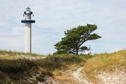 The lighthouse on Dueodde beach on Bornholm. In the foreground are the dunes with the white sand like in the Caribbean. A pine tree in the foreground and the white tower in the background.