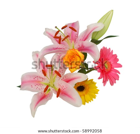 the lilly floral arrangement