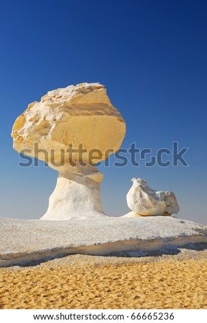 The limestone formation like a mushroom and a chicken in White desert, Sahara, Egypt
