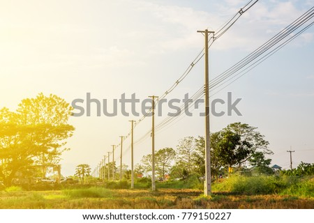 Stock Photo The line of electric poles with cables of electric and internet in the part of rice field with big trees bacjground and flare in the morning or afternoon.