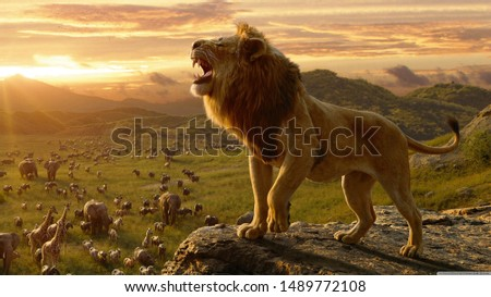 The lion (Panthera leo) is a species in the family Felidae; it is a muscular, deep-chested cat with a short, rounded head, a reduced neck and round ears, and a hairy tuft at the end of its tail