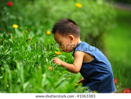 The little Asian Chinese boy is kissing the yellow flower