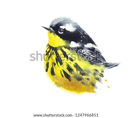 The little bird yellow cute spotted wildlife watercolor painting isolated on white background