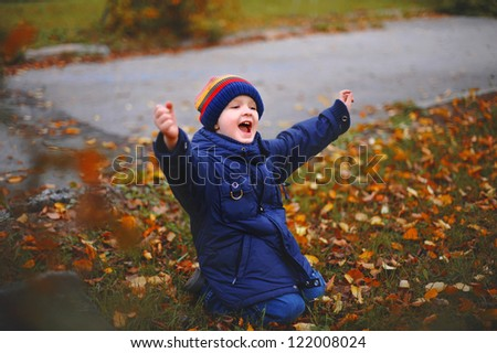 The little boy in autumn park, sits on a grass with a happy smile upon the face