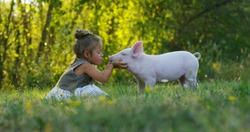 The little toddler girl caresses and kisses pig piglet on a green meadow. concept of sustainability, love of nature, respect for the world and love for animals. Ecologic, biologic, vegan, vegetarian