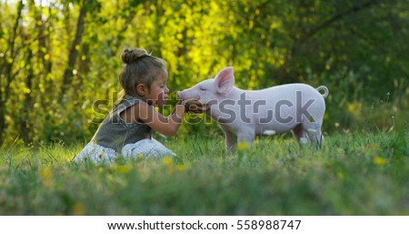 The little toddler girl caresses and kisses pig piglet on a green meadow. concept of sustainability, love of nature, respect for the world and love for animals. Ecologic, biologic, vegan, vegetarian ストックフォト ©