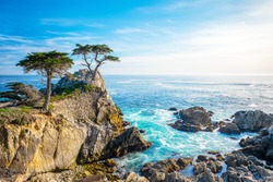 The Lone Cypress, seen from the 17 Mile Drive, in Pebble Beach, California.