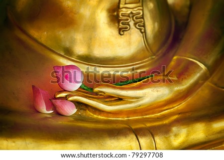 The lotus placed on the hands of the Buddha in Thailand uses flowers as a memorial to the Buddha. Lotus is a flower in Buddhism and a flower that is easy to find. #79297708