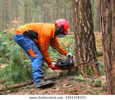 The Lumberjack working in a forest. Harvest of timber. Firewood as a renewable energy source. Agriculture and forestry theme. People at work.  Stock photo ©